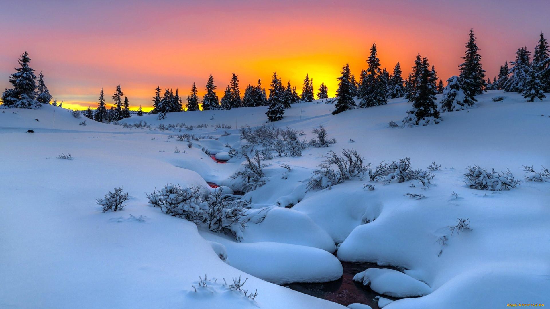 после выхода красивые картинки зимний закат штрафов